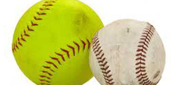 Baseball, Softball Teams Make Playoffs