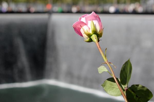 Current location, memorial, at the World Trade Center in NYC. (From the 9/11 photos stream on Flickr Creative Commons.)