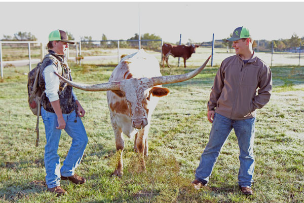 FFA members spend time inspecting and watching various animals. The program encourages each member to show their cattle in a variety of animal shows