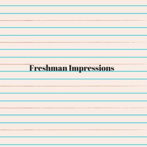 Freshman Impressions of High School