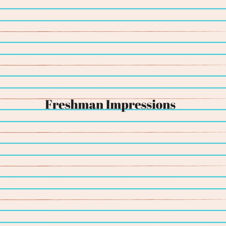 Freshman+Impressions+of+High+School