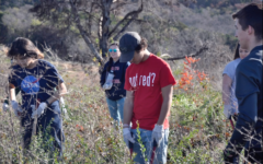 LBTV: NHS Cleans for Community Service