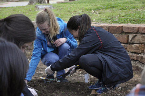 Update: Students To Join Day Of Service