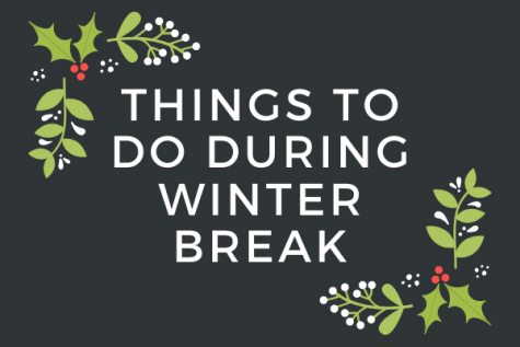 Things To Do During Christmas Break