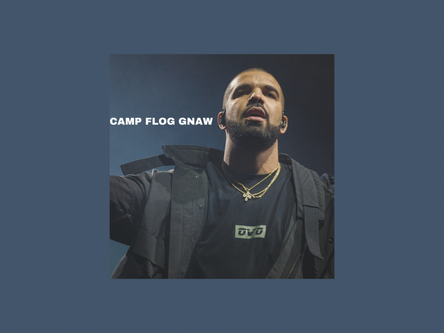 Thomas+writes+about+the+performances+and+highlights+at+Camp+Flog+Gnaw