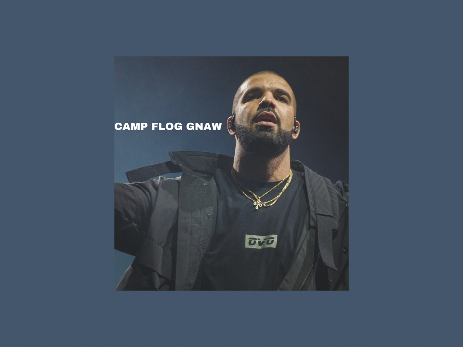 Thomas writes about the performances and highlights at Camp Flog Gnaw