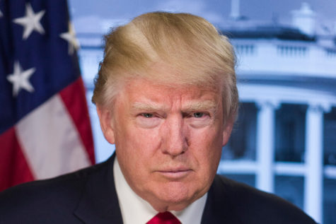 President Donald Trump poses for a headshot.
