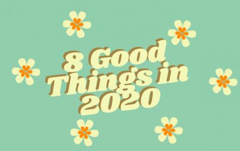 8 Good Things In 2020