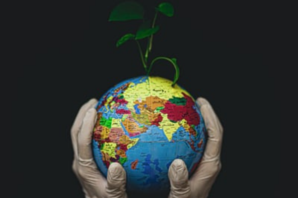 10 Things to Do to Honor Earth Day